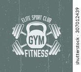fitness sport club isolated... | Shutterstock .eps vector #307012439