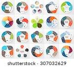 vector circle infographic....   Shutterstock .eps vector #307032629
