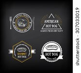 hot dog badges and menu design... | Shutterstock .eps vector #307033019