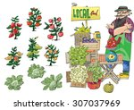 vendor of locally grown produce ... | Shutterstock .eps vector #307037969