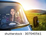 teenage girl and her friends on ...   Shutterstock . vector #307040561