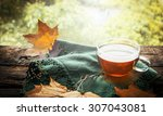 Cup Of Tea With Autumn Leaves...