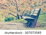 blurred wood beanch and autumn... | Shutterstock . vector #307073585
