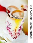 gold wedding rings on a bouquet ... | Shutterstock . vector #307097111