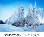 Russian Winter Forest Road In...