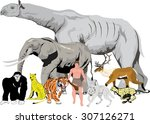 animals and human. illustration ... | Shutterstock .eps vector #307126271