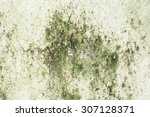 Old Concrete Wall Covered With...