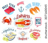 set of colorful cartoon seafood ... | Shutterstock .eps vector #307160045