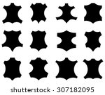 leather sign in different... | Shutterstock .eps vector #307182095