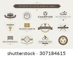 set of vintage sport badges and ... | Shutterstock .eps vector #307184615