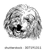 Vector   Rare Dog   Head Coton...