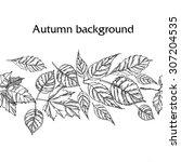 hand drawn autumn background | Shutterstock .eps vector #307204535