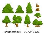 vector nature elements set ... | Shutterstock .eps vector #307243121