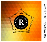 the letter r   colored... | Shutterstock .eps vector #307247939
