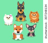 cartoon dogs standing collection | Shutterstock .eps vector #307248134