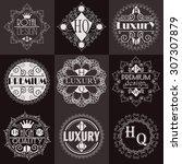 retro design luxury insignias...   Shutterstock .eps vector #307307879