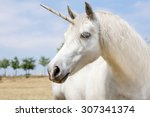 unicorn realistic photography | Shutterstock . vector #307341374