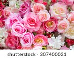 Stock photo soft color roses background 307400021