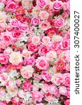 Stock photo soft color roses background 307400027