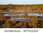 Summer View Of Wooden Trails I...