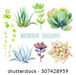 Watercolor Succulents Set. Han...