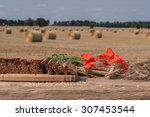Modern Agriculture   After The...