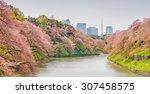 sakura blossom at kitanomaru... | Shutterstock . vector #307458575
