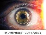halloween themed closeup macro... | Shutterstock . vector #307472831