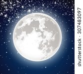 full moon | Shutterstock .eps vector #307483097