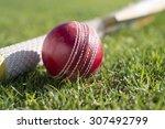 red cricket ball on the grass... | Shutterstock . vector #307492799