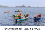 many little fishing boats... | Shutterstock . vector #307517921