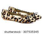 Leopard Ballet Shoes Isolated...