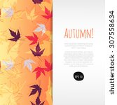 autumn background with colorful ... | Shutterstock .eps vector #307558634