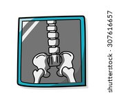 x ray bone color doodle | Shutterstock .eps vector #307616657