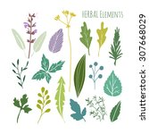 Set Of Hand Drawn Herbal...