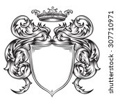 vector drawing of a   heraldic...   Shutterstock .eps vector #307710971