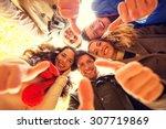love  friendship  gesture ... | Shutterstock . vector #307719869