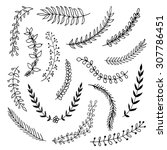 hand drawn vintage floral... | Shutterstock .eps vector #307786451