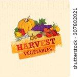 harvest festival autumn... | Shutterstock .eps vector #307802021