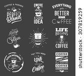 set of vintage wine typographic ... | Shutterstock .eps vector #307819259