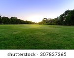 golf course landscape with tree. | Shutterstock . vector #307827365