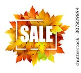 autumn typographic. fall leaf.... | Shutterstock .eps vector #307829894