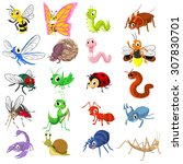 Set Of Insect Cartoon Characte...