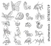 set of insect cartoon character ...