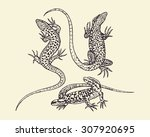 vector illustration of hand... | Shutterstock .eps vector #307920695