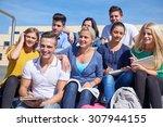 group portrait  of happy ... | Shutterstock . vector #307944155