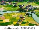 rice field in harvest time in...   Shutterstock . vector #308045699