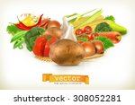 harvest juicy and ripe... | Shutterstock .eps vector #308052281