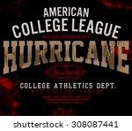 tee graphics american college... | Shutterstock .eps vector #308087441