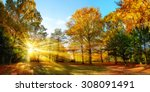 scenic autumn panorama with the ... | Shutterstock . vector #308091491